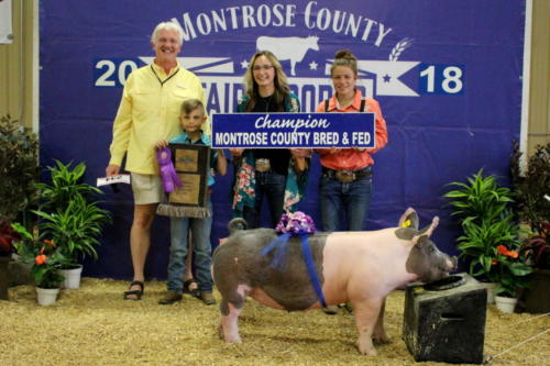 Grand Champion Bred & Fed Market Swine - Michaela Ladage - Montrose Memorial Hospital