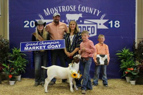 Grand Champion Market Goat - Ridge Smith - Kuboske Co. Inc.