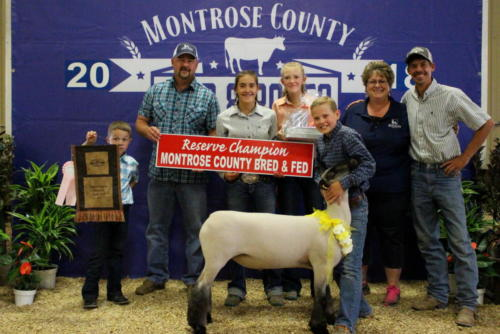 Reserve Champion Bred & Fed Lamb - Garret Millsap - Home Loan State Bank