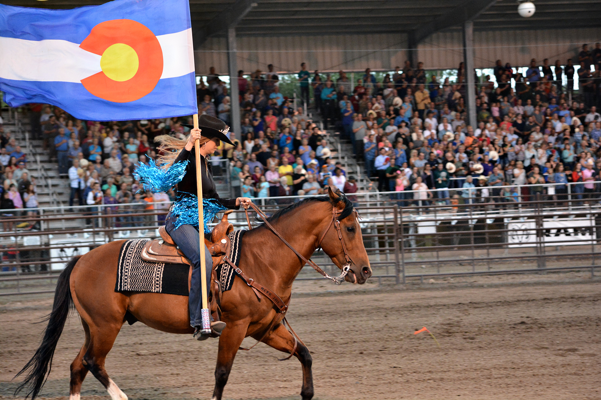 Schedule Montrose County Fair And Rodeo
