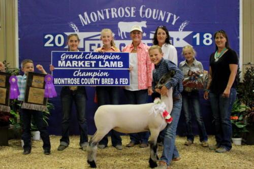 Grand Champion Market Lamb - Grand Champion Bred & Fed - Garret Millsap - JC Propane